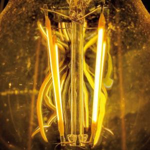 Focus Filament Bulb