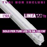 Plafoniera T8 Linea 120 X1 Simboli